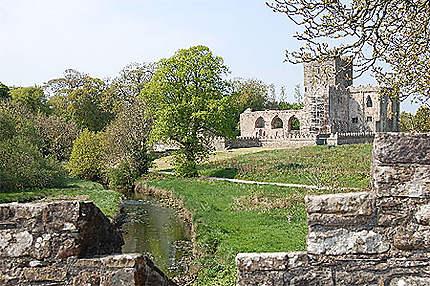 Tintern Abbey (Arthurstown)