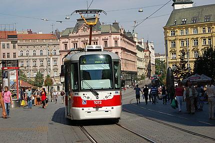 Tramway sur la place de la liberté