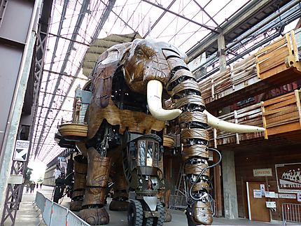 L'éléphant mécanique en sommeil