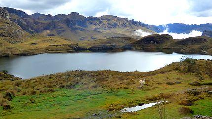 Parc national de Cajas, Équateur