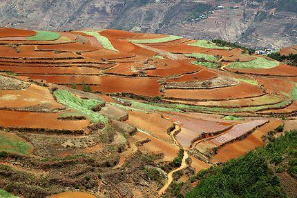Route au milieu des terres rouges à Yunnan
