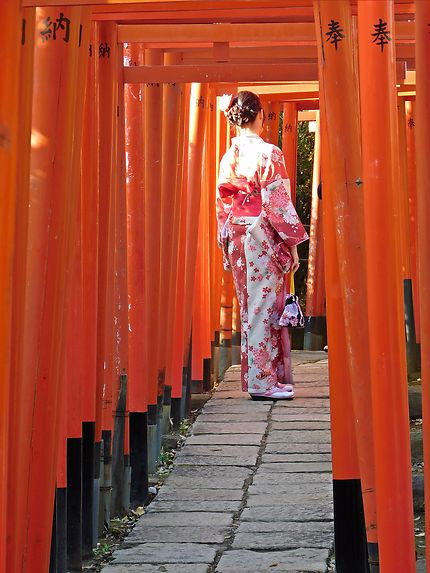 Tokyo - Rayon de soleil au sanctuaire Nezu-jinja