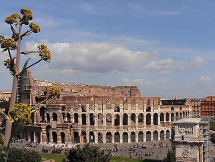 L'arrière du Colisée