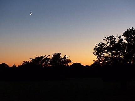 La nuit des étoiles 6 août