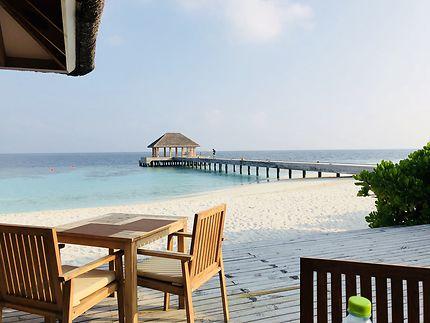 Maldives 2018