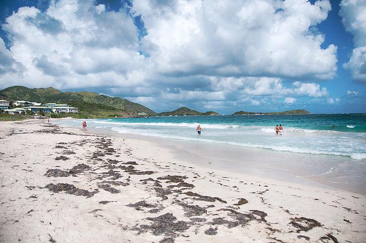 Des plages préservées et la vie qui reprend…