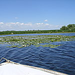 Balade en barque sur le calme Danube