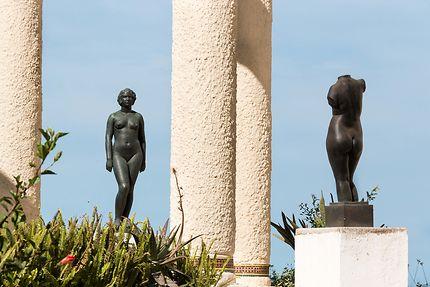 Alger - Musée Beaux Arts - Jardin suspendu