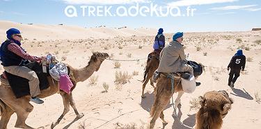 Tunisie : rando méharée dans le désert, 8 jours