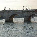 Mouette et bateau-mouche entourant le pont neuf