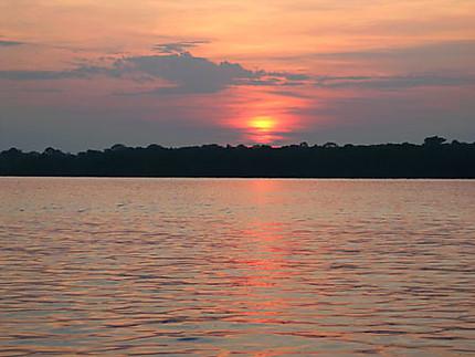 Le lever de soleil sur L'Amazone