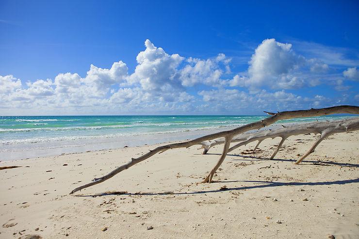 Parc national de Lucayan (Bahamas)