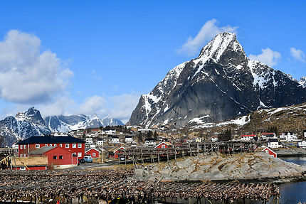 Stockfish, Norvège