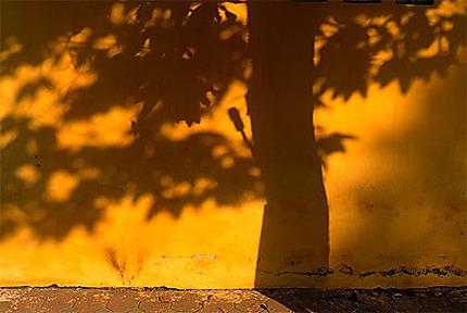 Lumière et ombres