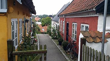 Ruelle de Roskilde