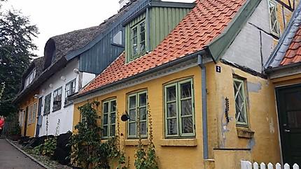 Maisons près du port