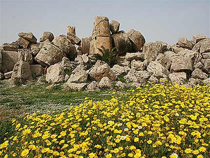 Sélinonte Temple G ruines énormes