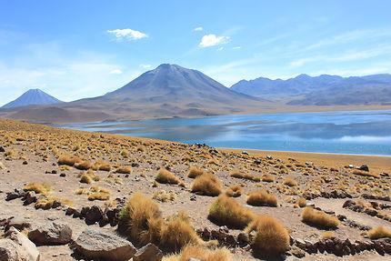 Aux abords de San Pedro de Atacama
