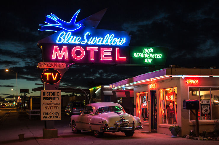 The Blue Swallow by night