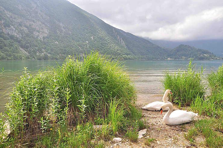 Aiguebelette, le lac sauvage