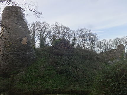 Ruines du Château de Penhoat