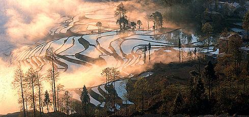 Chine : Kunming et le Yunnan du fleuve Rouge - Dominique Roland