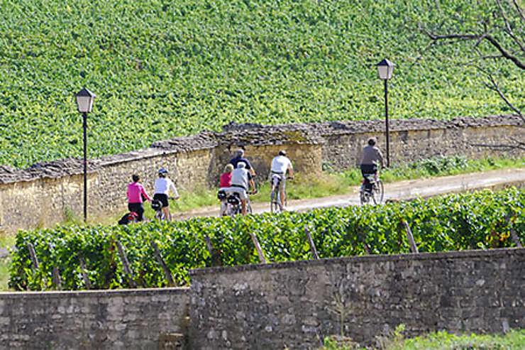 Au cœur de la campagne : les voies vertes et la Voie des vignes
