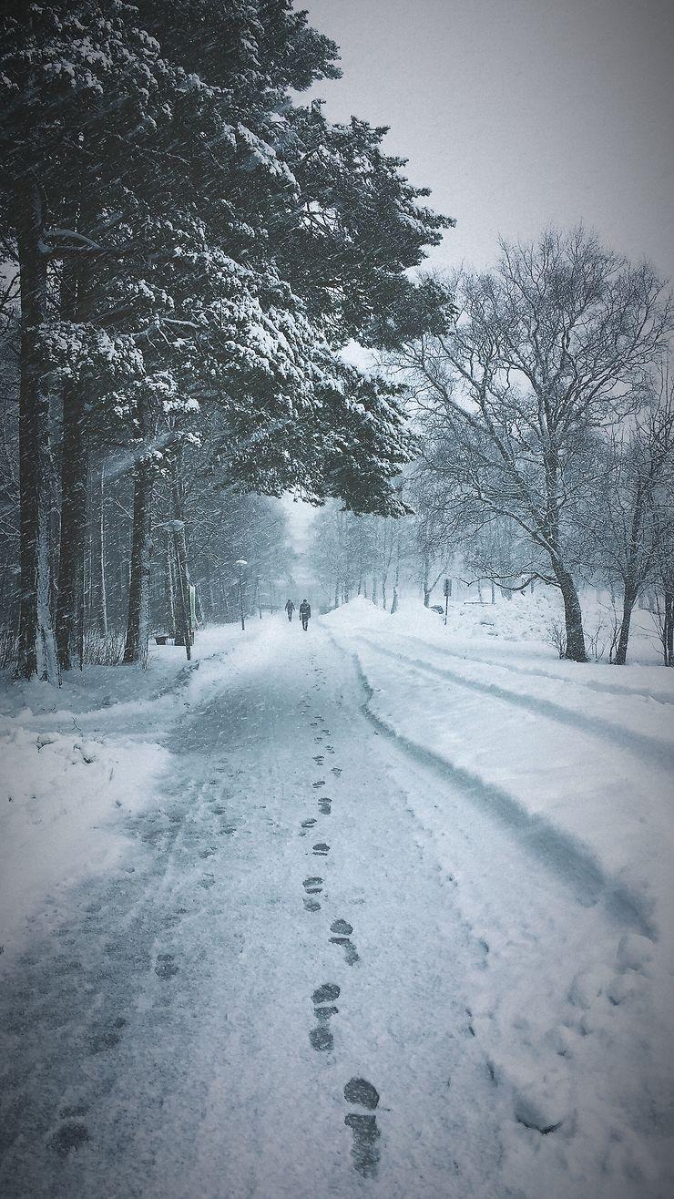 Un hiver à Trondheim, Norvège