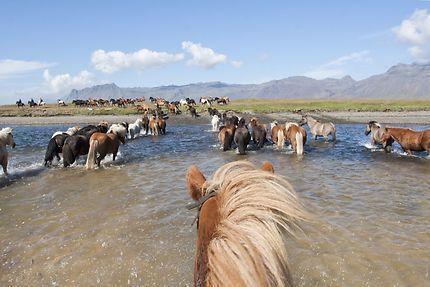 Randonnée en Islande