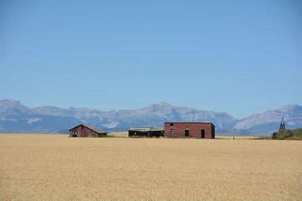 Les hautes plaines du Wyoming