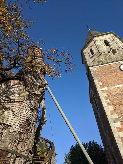 Chêne et clocher