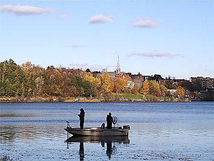 Pêche à la ville