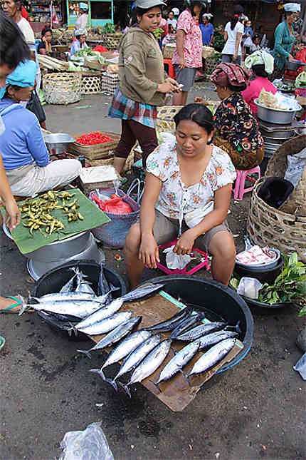 "Marché de Klungkung - rayon ""poissons"""