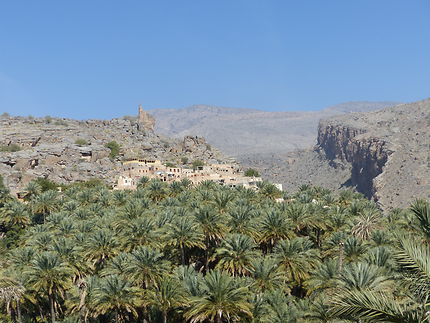 Village de Misfah et sa palmeraie, Oman