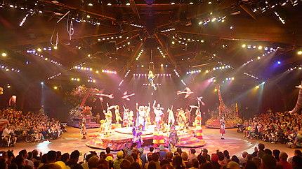 Final du spectacle Lion King
