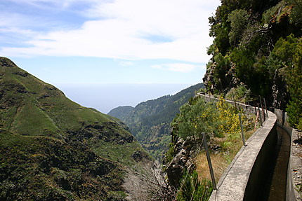 Madère - Levada