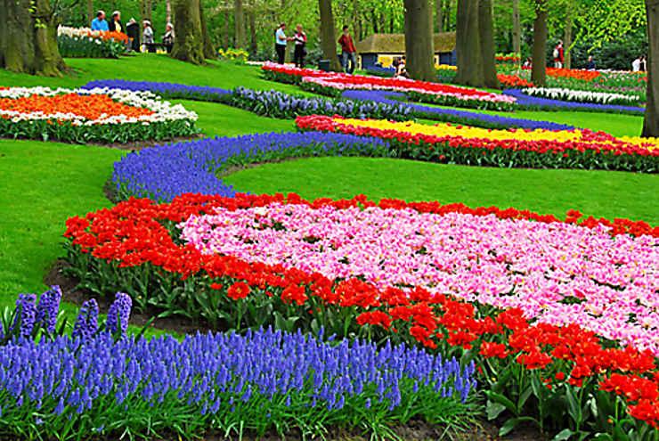 jardin des tulipes keukenhof