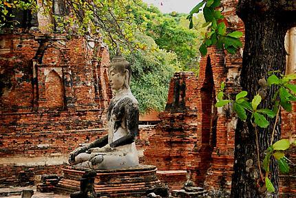 Bouddha au Wat Phra Si Sanphet