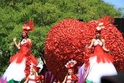 Fêtes des fleurs à Funchal