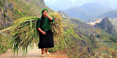 Montagnes et ethnies : Rencontres au Nord-Est