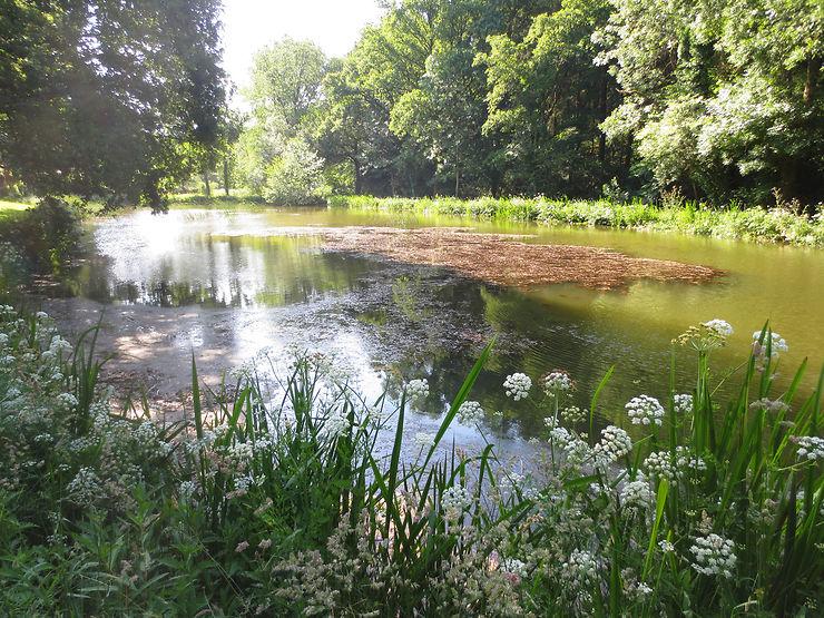 Les ruisseaux de la Chouannerie - Morbihan, Bretagne