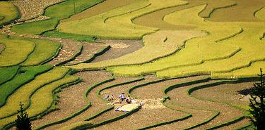 Mu Cang Chai insolite -Hors des sentiers battus