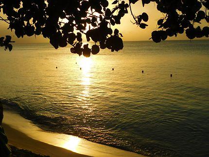 Coucher de soleil en Guadeloupe, Anse-Bertrand