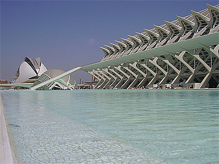 L'aquarium de Valence (Espagne)