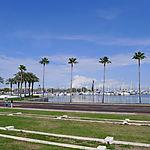 Port de St Petersburg
