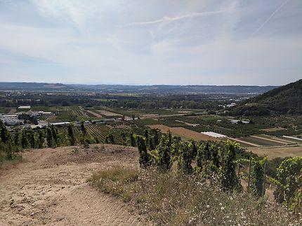Panorama vallée du Rhône