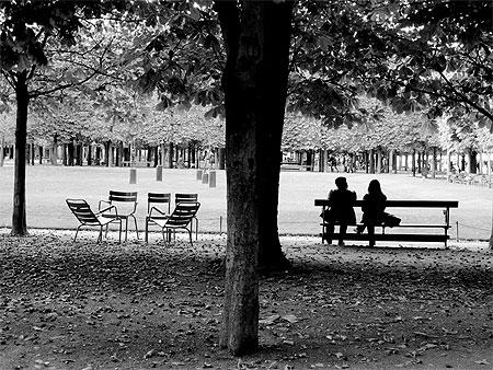 Jardin des tuileries noir et blanc jardin des for Jardin noir et blanc