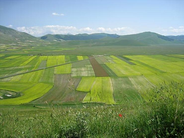 Monts Sybillins et Valnerina, vert piqué