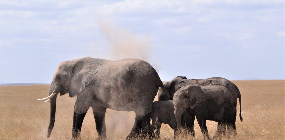 Notre voyage au Kenya