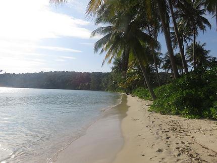 L'île des cocotiers du Cambodge